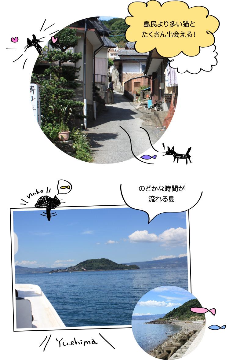 猫の島 湯島